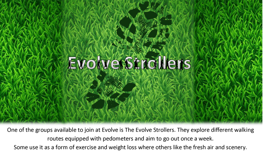 Evolve Strollers Web Page 1