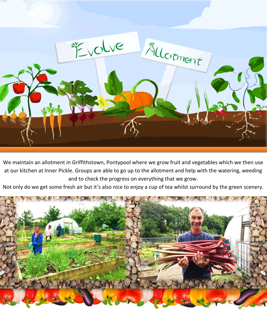 Allotment Web Page 1
